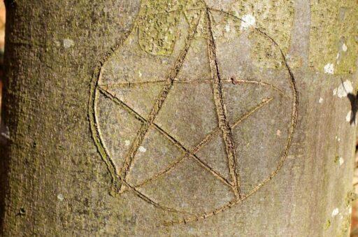 Pentaculo tallado en el tronco de un árbol.