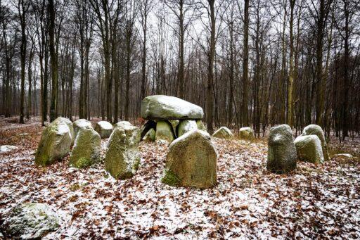 Tumba vikinga con piedras en medio del bosque, escandinavia, Dinamarca, (símbolos vikingos y nórdicos).